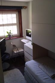 Nice small single room in house to share with only 2 more occupants in Basingstoke city centre
