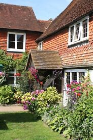 Couple Required Kitchen & Bar Restaurant for our country pubs in West Sussex