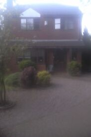 room to let in upmarket area of Lichfield