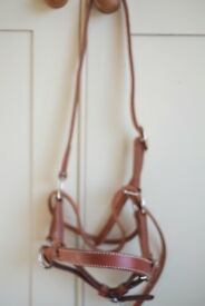 Leather side pull bridle