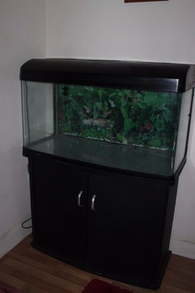 Aqua One 980 Style 240 Litre Fish Tank with Stand - Excellent Condition