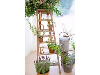 Vintage Step Ladder for Sale - Perfect for Wedding / Upcycle