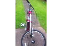 Genuine authentic schwinn stingray bike