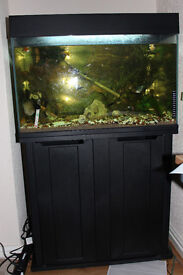 Full Tropical Fish Setup..77 Liter tank...Stnad Cabinent..Fish..Accessories And Ornaments