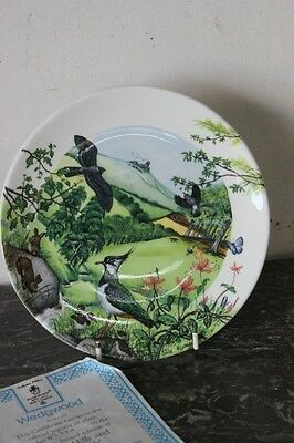 """WEDGWOOD"" PIATTO IN PORCELLANA  1988 "" ROLLING HILLS AND GRASSLANDS"""