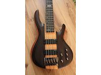 ESP LTD D-5 Bass Guitar Natural Satin