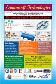 Web dev,Web design,E-commerce,Web portals,Soft dev,Cyber Security.,T Support,SEO,CMS,ERP,B2B,B2C