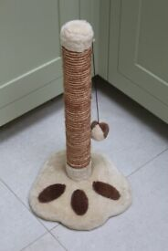 Cat kitten scratching post cute paw print ball toy play fun