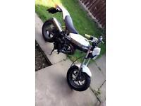 Street magic 50cc - moped