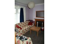Lovely room to rent in Brynmill