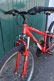 Apollo bike for boys or girl