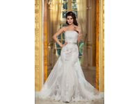 Verise Bridal Charlize Lace Wedding Dress in Cappuccino and Ivory size 16