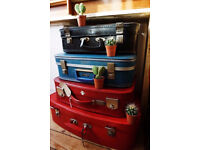 Vintage Suitcases, Scottish Grown Cacti & Retro Childrens Chairs