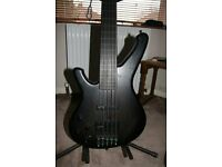 Sandberg Custom fretless 5 string left handed bass guitar