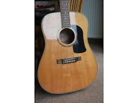 Washburn D10 Acoustic Guitar - Excellent Condition