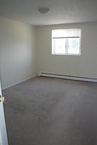 235 Morgan Avenue - One Bedroom Apartment Apartment for Rent Kitchener / Waterloo Kitchener Area image 3