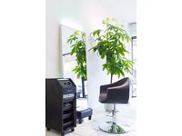 Hairdresser/Hairstylist chairs to rent - AMAZING OPPORTUNITY