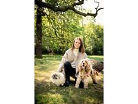 Dog walker and day care in Earls Court covering Kensington and Chelsea Borough