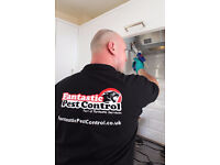 Certified pest control experts in Westminster, London