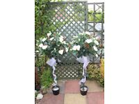 IVORY ROSE WEDDING TREES X 2 WITH LIGHTS AND IVORY SASH