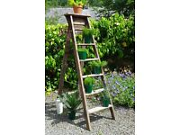 Vintage Sturdy Solid Wood 6 Tread Step Ladder. Ideal Garden Shelving Interior Display Industrial