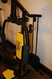 Everlast Multi Gym for Sale