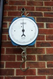 Salter Heavy duty hanging scales range 0 to 50kgs