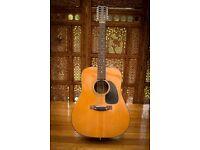 Diastone 12 String Acoustic Guitar