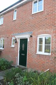 Modern 2 bed house to rent in Lomond Road Estate Attleborough - Available November - £690 pcm