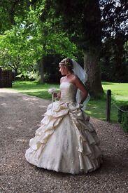 Light gold /Latte Simplicity Wedding Dress - Size 10