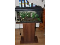 fish tank fluval aquarium complete set up