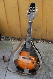Harley Benton electro acoustic mandolin with foam case and book