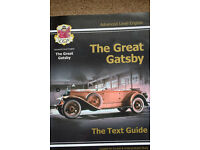 "A Level English text guide to "" The Great Gatsby"""