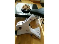 Cycle Tone exercise bike with resistance bands