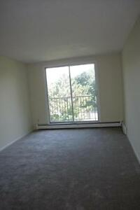 235 Morgan Avenue - One Bedroom Apartment Apartment for Rent Kitchener / Waterloo Kitchener Area image 4