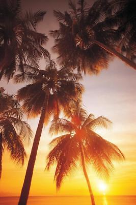Palms at Sunrise Tropical Beach Photo Art Print Poster 24x36 inch - Tropical Beach Photos