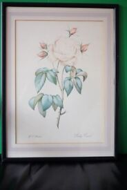 Framed and glazed vintage print of Rose by W E Huston