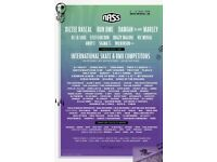 Volunteer at NASS Festival - go for free without missing any of the festival!