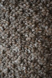 Thick Loop pile carpet Roll end £30