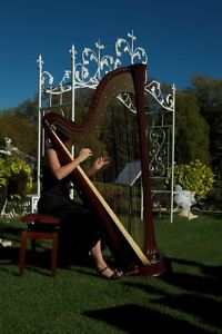 Professional Harpist Available for Weddings and Events Kingston Kingston Area image 2
