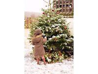 Mistletoe: A Christmas miscellany