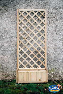 Wooden Trellis, Pergola, Outdoor, Garden, Heavy duty,chairs,Picnic table,Seating