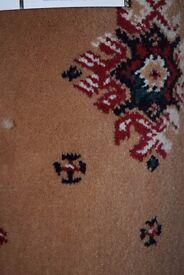 Wilton 100% Polypropylene Carpet 3.1m x 4m (104)