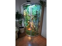 Large DYI Vivarium for reptiles