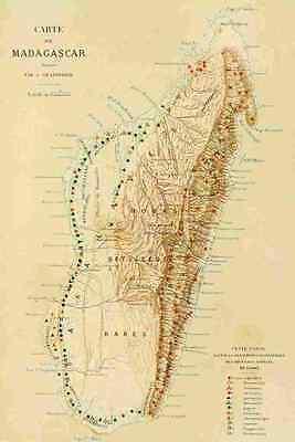 A4 Photo Map The Natural History of Madagascar 1885 Madagascar Print Poster