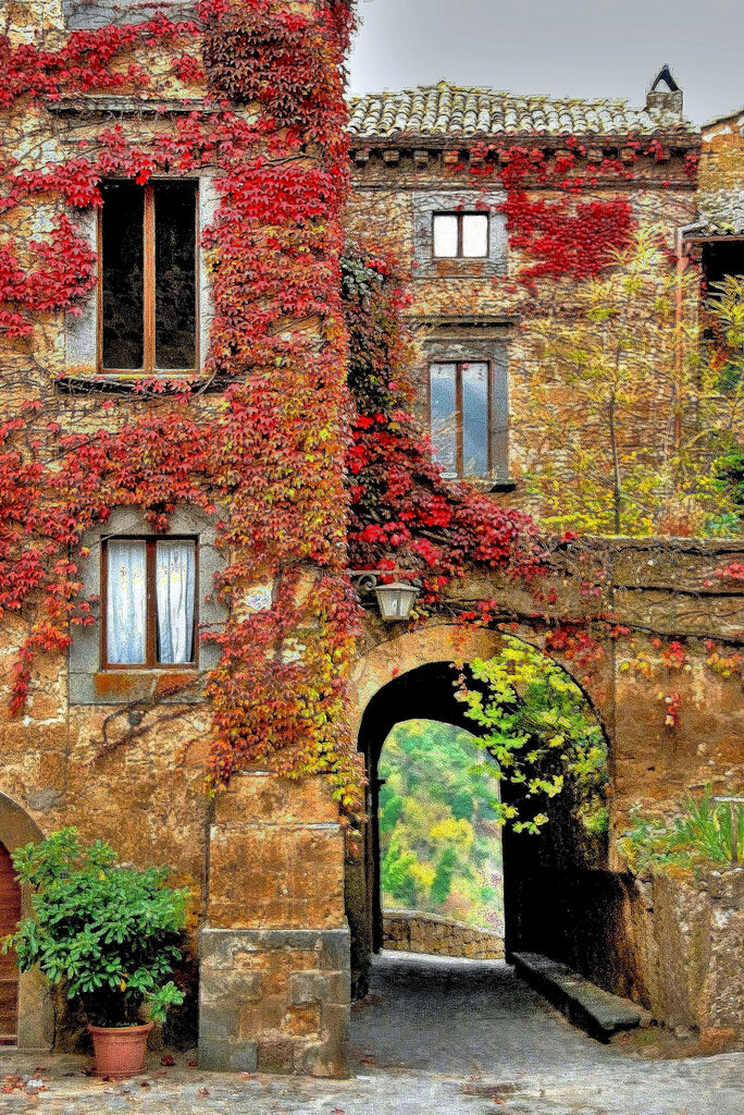 Wild Ivy Treasures