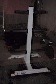 Cybex Commercial Olympic Weight Plate Tree Storage Stand - Weights Gym