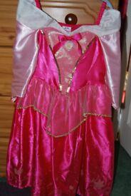 Sleeping Beauty Costume
