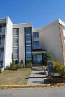 Clean & comfortable 2 bdrm Fully Furnished condo in SW Edmonton!