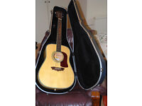 Washburn Rarewood WD43S Birdseye maple Dreadnought + fitted case